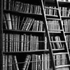 ext_85380: book love (library)