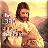 sparowe: (Shepherd)