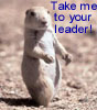 speaker_to_customers: (Black-Tailed Prairie Dog)