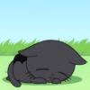 nyanpire: (Napping)