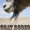 captainsblog: (Goat)