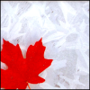 in_stead: (maple leaf rag)
