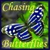 finabair: (butterflies)