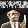 rinja: and now for something completely random (it's a monkey with a gun of course)