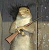 feorag: A squirrel with a gun (peeved squirrel)