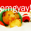 supermagpie: A VERY happy looking hamster is eating a crouton in front of a red background. White text above him says 'omgyay!' (omgyay)