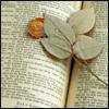 lizbet: (flowerbook) (Default)