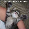 dragonpearl: (hug)
