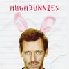 hughbunnies: (hughbunnies, HughBunnyEars)