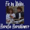 waldos_writings: (Hornblower fic)