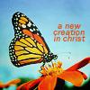 haight: ([Christian] New Creation)