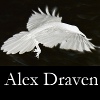 alexdraven: Negative image of a raven in flight with the text Alex Draven (Reverse Raven)