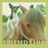 alexdraven: (PYO Pony)