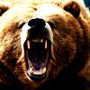 psychicbear: (raawwr i'm a bear)