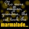 foreverphoenix: (Amery's Marmalade)