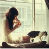 sin_autem: (кошка на окошке)