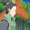 endgames: (Nara)