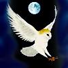 arliss: (owl moon)