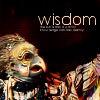 kittydesade: (not all of wisdom brings joy)