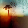 bristrek: A bare but tall tree in distance with a few birds flying from it, in sunset tints (Misc Lonesome Old Tree)
