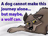 """kyrielle: Screen cap of Balto the wolf-dog. Quote text: """"A dog cannot make this journey alone... but maybe, a wolf can."""" (balto wolf can)"""