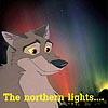 """kyrielle: Screen cap of Balto the wolf-dog, looking hopeful against an aurora borealis background. Text: """"The northern lights...."""" (balto - the northern lights)"""