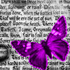 kyrielle: (text butterfly)