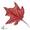 kyrielle: (leaf)