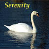 kyrielle: (serenity)