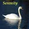 kyrielle: (serenity)
