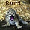 kyrielle: (Kitten - Rarrr)