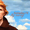 "copracat: bowie with text ""someday I'll fly away"" (bowie fly)"
