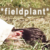 copracat: John from SGA, facedown in a field with text '*fieldplant*' (john fieldplant)