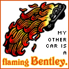 solarcat: (GO -- Flaming Bentley)