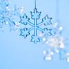 solarcat: (Xmas -- Snowflake)