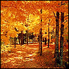 topaz119: (path through the woods)
