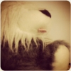 pushistyj_koshk: plush (pic#1420892)