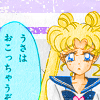 inthenameofthemoon: ([usagi] i am disappoint son)