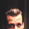 katekat: (SUITS_adorable harvey)