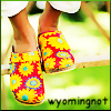 wyomingnot: (clogs (wyomingnot))