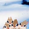 covet: (BAMBI [bunnypile] filling the days ↓)