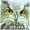 fluffyhojo: (Owl - I see ya.)