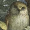 xylohypha: Owl (semyaza_owl2)