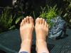 cygnet: feet (Default)