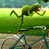 jaylee_g: (Kermit)