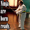 merrily: Ninja are born ready. (David-Hewlett)
