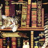 miri: (books with cat)