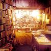 ladysingsthe: (dreamhouse library)