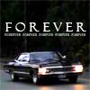 iluvroadrunner6: ([spn] impala)