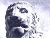 frumiousb: (lion)
